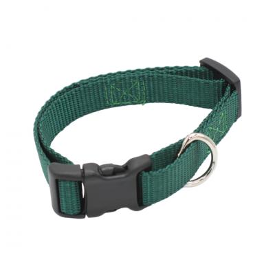 Green SM Collar Get Connected PetAbilities